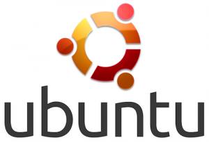 Selenium Testing on Linux Ubuntu